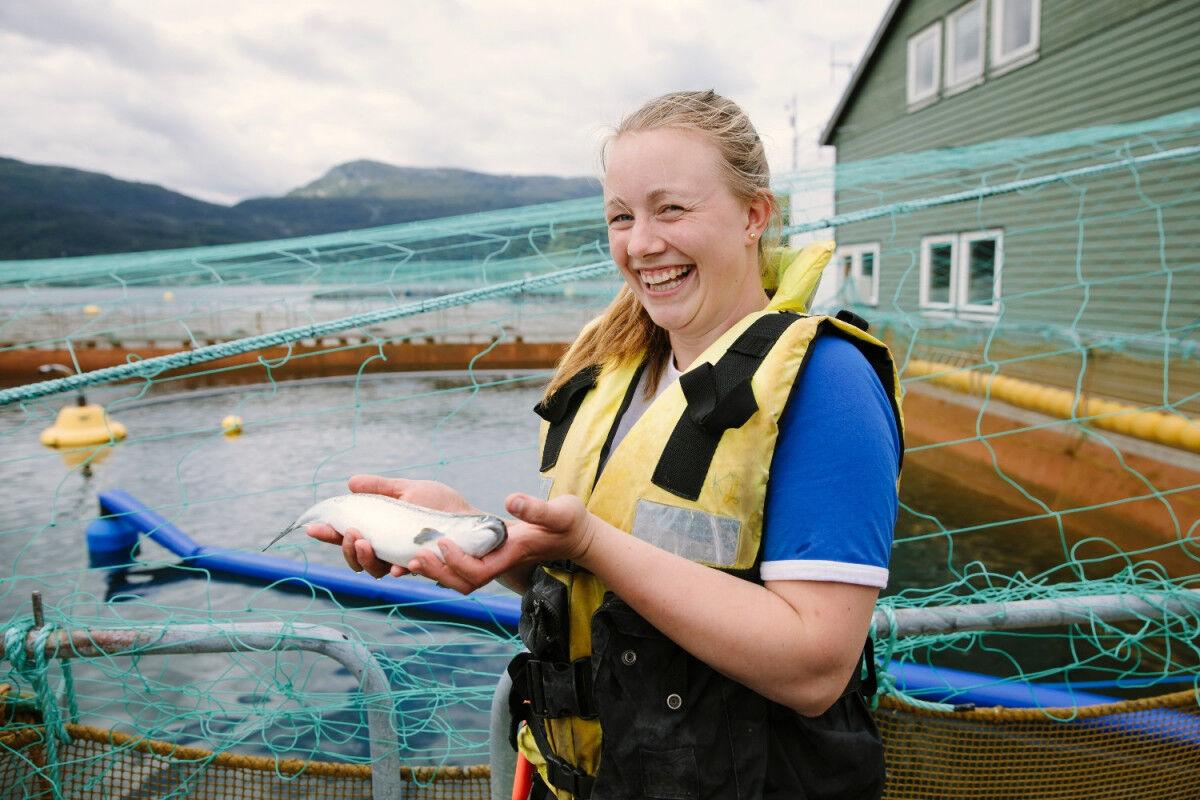 tagAlt.Lingalaks Norwegian fish farm Cover