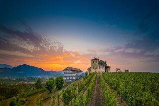 tagAlt.Berlucchi Vista Castello cover