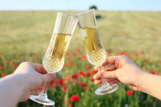 tagAlt.Champagne flutes toasting in field Cover