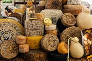 tagAlt.Cheese Festival Bra Cover