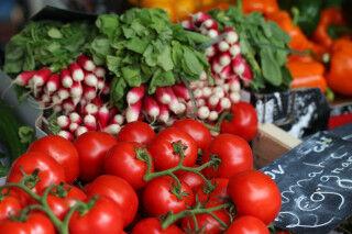 tagAlt.Italian Vegetables Mixed Colors Part 1 Cover