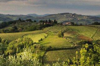 tagAlt.Lazio wine region countryside Cover