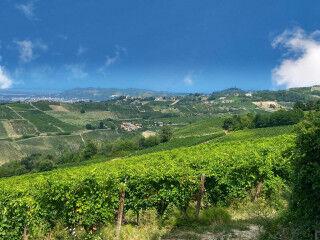tagAlt.Oltrepò vineyards hills