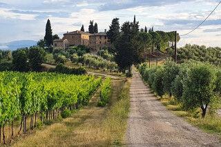 tagAlt.Rocca delle Macìe Fizzano Borgo Cover