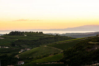 tagAlt.Verona hills wine country Cover