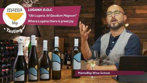 tagAlt.Lugana doc wine