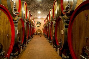 tagAlt.Cantina Tedeschi aging barrels 4