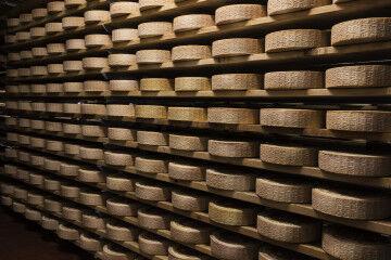 tagAlt.Cheese wheels ageing cellars Piave DOP 2