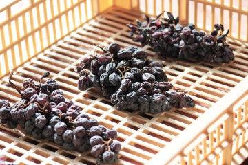 tagAlt.Dried grapes marcs Consorzio 3