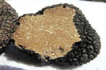 tagAlt.Inside Black Italian truffle 1