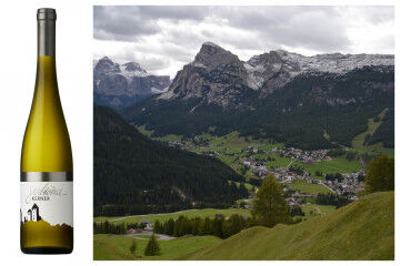 tagAlt.Kerner white Alto Adige wines collage 1
