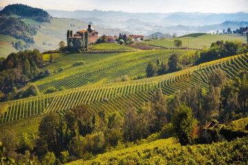 tagAlt.Monferrato landscape and vineyards 3
