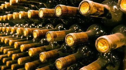 tagAlt.Montepulciano wine bottles stored aging 4