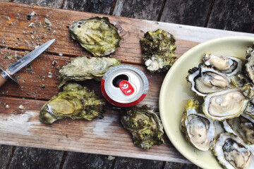 tagAlt.Oysters safety summer eating 3