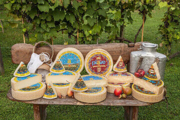 tagAlt.Piave cheese group outdoors 1
