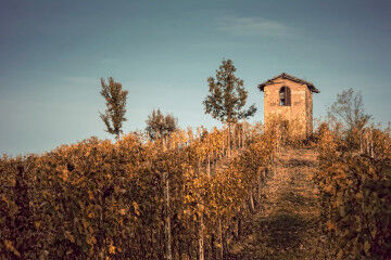 tagAlt.Piedmont landscape with country house 1