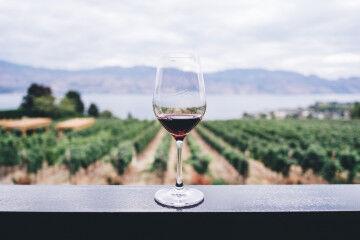 tagAlt.Red wine glass lake Garda background 6