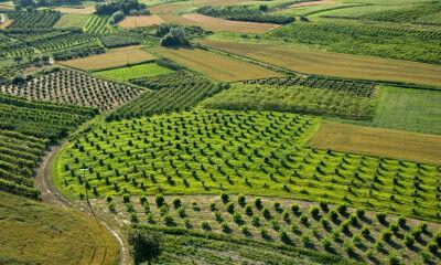 tagAlt.Roero Piedmont vineyards drones 5