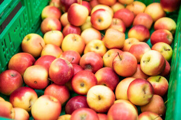 tagAlt.Taste the Alps Rockit Valtellina Apples 3