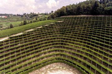 tagAlt.Tedeschi Maternigo Anfitheatre vineyards 1