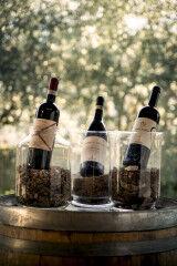 tagAlt.Tedeschi cru selections in vases barrels 5
