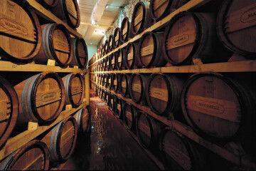 tagAlt.White barrels Cantina Masciarelli 2
